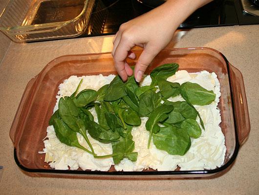 08_lasagna_layer_spinach.jpg