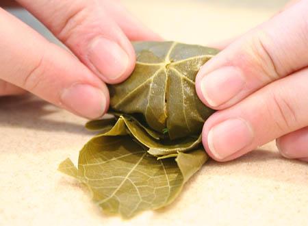 stuffed-grape-leaves-rolling-leaf.jpg