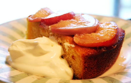 polenta-cake_slice-with-whip-cream.jpg