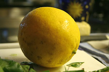 meyer_lemon.jpg