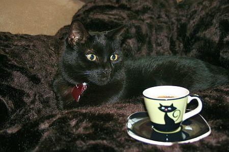 nimue_coffee.jpg