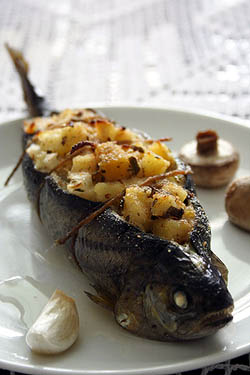 3_stuffed_brown_trout_by_palachinka.jpg