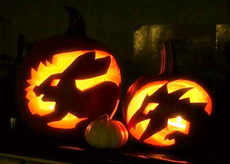 haloween_2008_pumpkins1.jpg