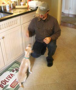 10_dog-treats_feeding-the-beast_small
