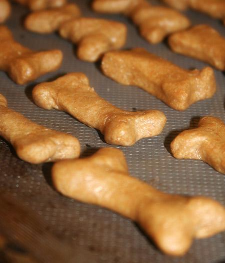 dog-treats_bones-on-tray.jpg