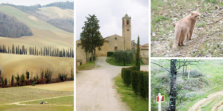 sangimignano_countrywalk_collage