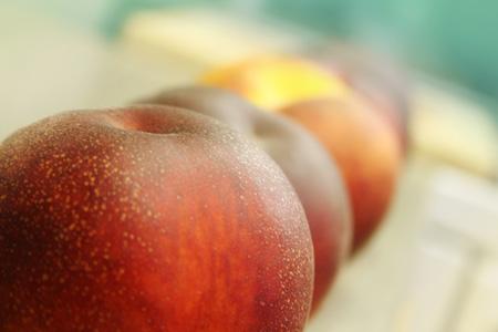 from-the-farm-peaches_peaches-ina-row450